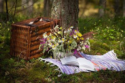piknik yeri