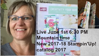 2017-18 Stampin'Up! catalog