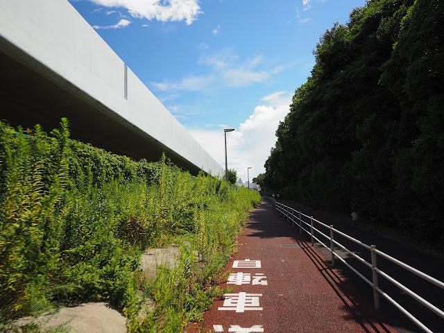 横浜 金沢地区 自転車レーン
