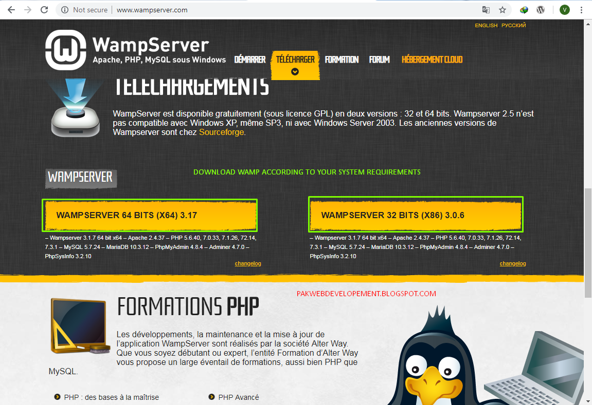 How To Download and Install WAMP Server on windows - Pak Web