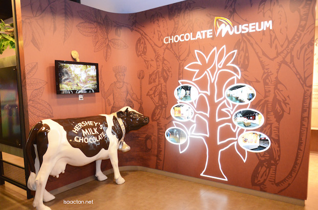 Welcome to the Chocolate Museum
