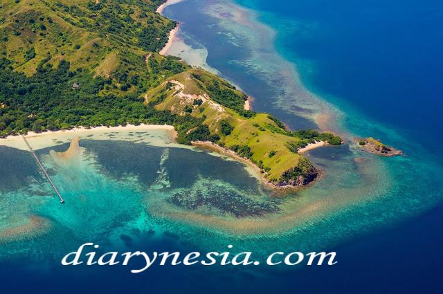 komodo dragon ancient animal, komodo island indonesia, komodo national park tourism, diarynesia