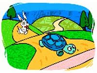 kelinci kura-kura