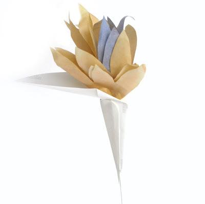 Paper Strelitzia Flowers