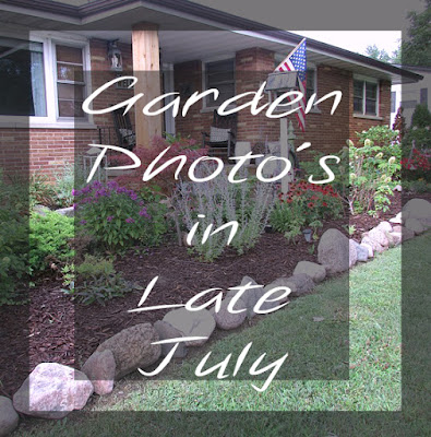 Garden photos of flowers