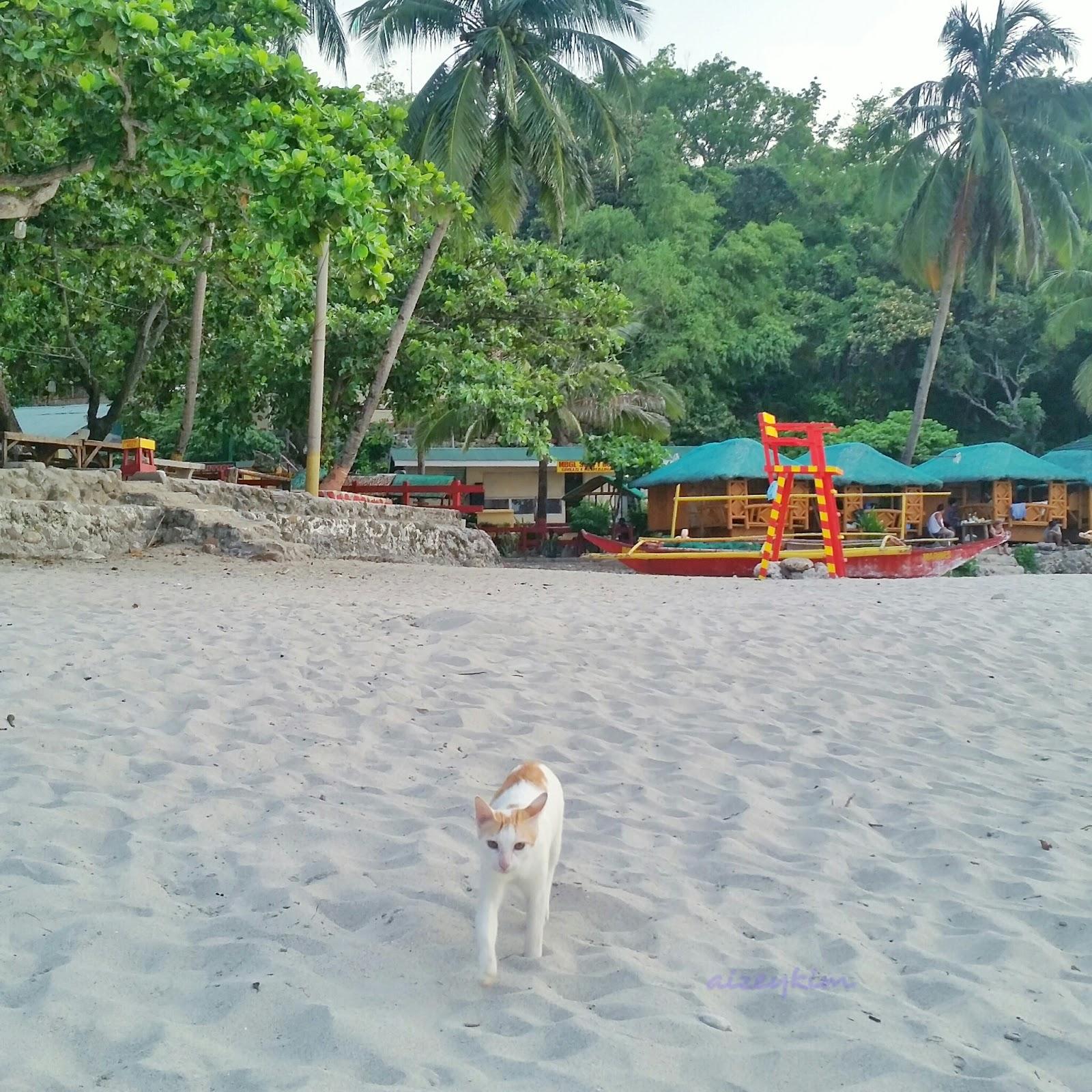 Boracay Beach: Aizeenerary: Katungkulan Beach (Boracay De Cavite) August 2015