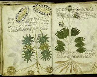 वॉयनिच मैन्युस्क्रिप्ट (Voynich Manuscript) दुनिया का सबसे बडा लिग-दुनिया के सात अजूबे-दुनिया में कितने देश हैं-दुनिया के रहस्य-दुनिया का इतिहास-दुनिया के अजूबे दुबई-दुनिया के अनोखे रहस्य-संसार के 10 अजीब रहस्ये हिंदी में जाने World's 10 Strangest Rhsye go in Hindi,आप जाने दुनिया के 10 अनसुलझे रहस्य-आप जाने दुनिया के 10 अनसुलझे रहस्य-संसार में अनेकों ऐसे रहस्य है जो की वैज्ञानिको, विद्वानों की लाख कोशिशों के बावजूद भी आज तक अनसुलझे है जैसे की फैस्टोस डिस्क की रहस्यमयी कहानी का क्या राज है? लंदन के उस 18वीं सदी के स्मारक के पीछे की सच्चाई क्या है? DOUOSVAVVM कोड के पीछे की गुत्थी क्या है,  वॉयनिच मैन्युस्क्रिप्ट, क्रिप्टोज, तमम शेड, 30 करोड़ साल पुराना लोहे का पेंच, मेक्सिको का टियाटिहुआकन शहर, समेत दुनिया में ऐसे कई रहस्य हैं, जिनसे अब तक पर्दा नहीं उठ पाया है दुनिया के ऐसे रहस्य जिन्हें आज तक कोई नहीं सुलझा दुनिया के 7 रहस्य जो अनसुलझे है दुनिया के 5 अद्भुत और अनसुलझे रहस्य क्या जानते है भारत के रहस्य  अनसुलझे रोचक रहस्य  दुनिया की अद्भुत रहस्य  रहस्य किताब  रहस्य पुस्तक  अनसुलझे राज  रहस्य फिल्म  रहस्य मय कहानी