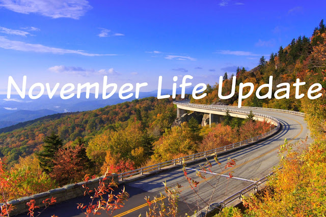 http://lostrightdirection.blogspot.com/2016/12/life-update-november.html