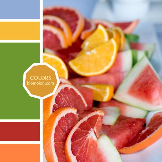 variedad_en_color_moodboard_70
