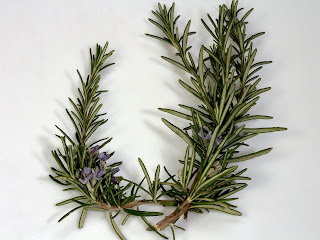 Rosemary essential oil is an energizing oil, it helps to restore mental alertness when experiencing fatigue