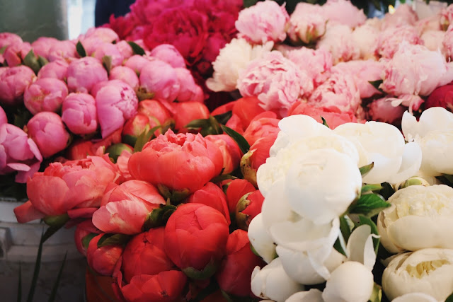 Peonies from Pike Place Market in Seattle