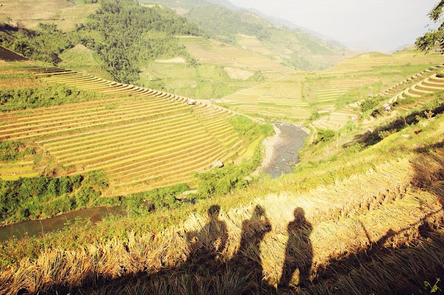 The joy of the ethnic minority in Mu Cang Chai in the harvest of rice 3