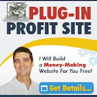 Plug In Profit Site