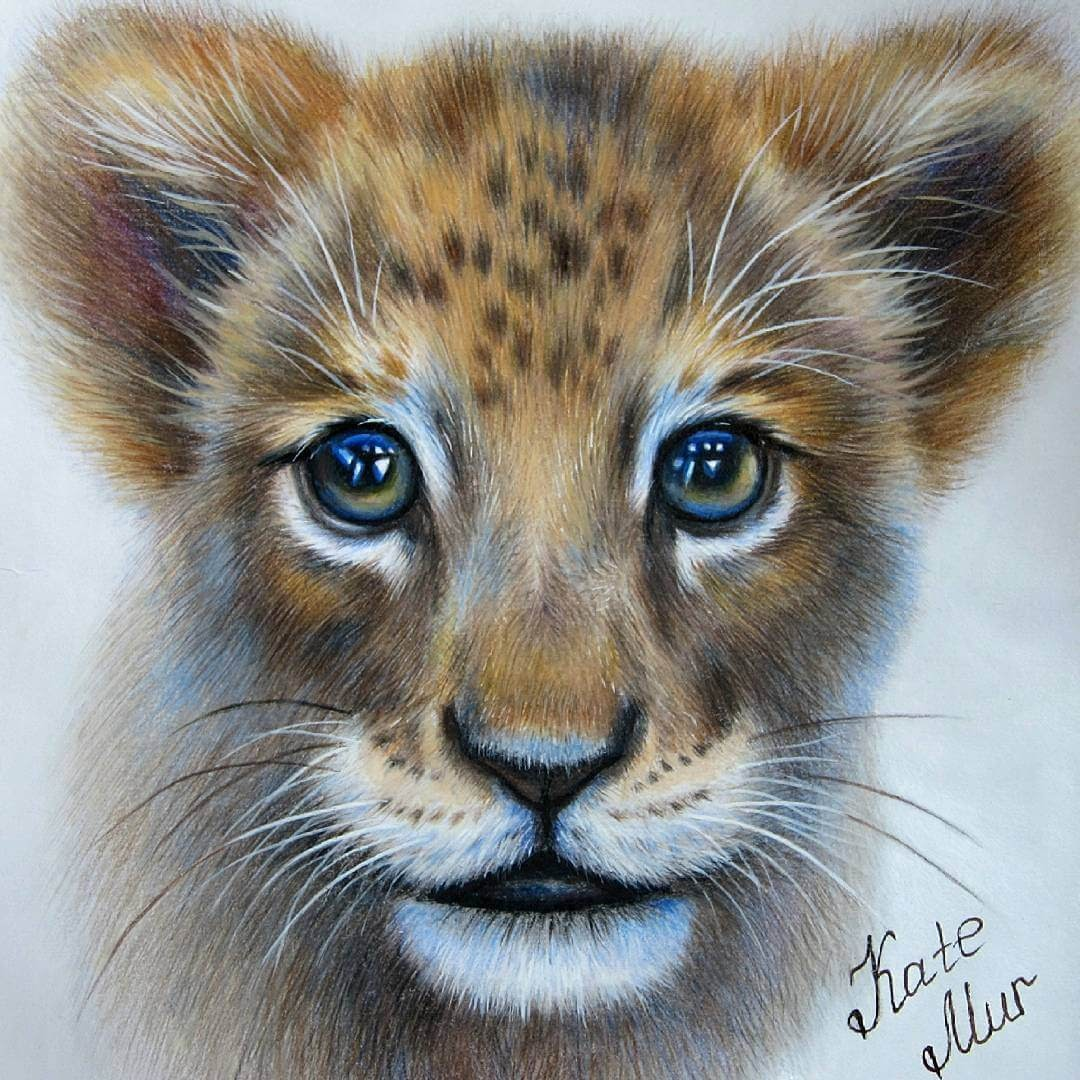 03-Lion-Cub-Kate-Mur-Animal-Art-with-Pencil-Ballpoint-Pen-and-Paint-www-designstack-co