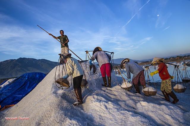 The salt fields near Van Phong Bay, Khanh Hoa province 8