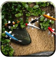 koi live wallpaper v1 9 apk full version apkyoung download apps