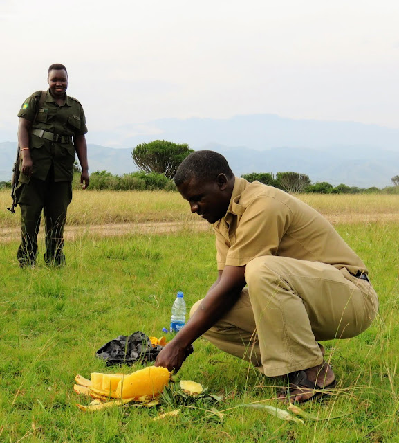 Geoffrey Katende from Matoke tours cutting a pineapple in Queen Elizabeth National Park