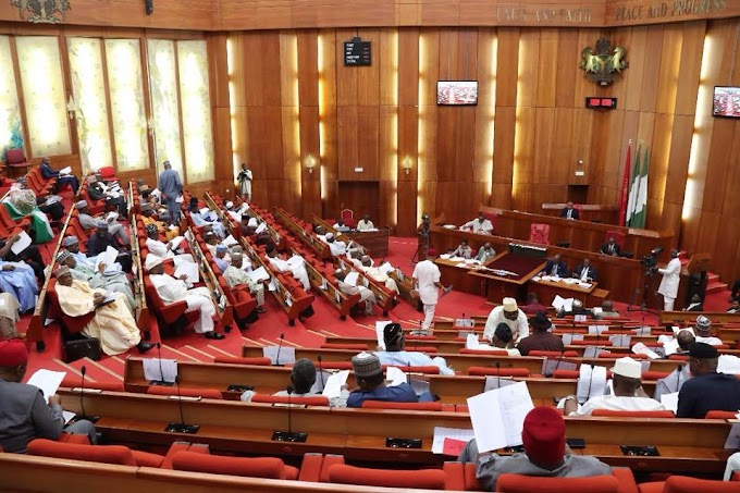 Herdsmen killings: Nigerian Senate states position