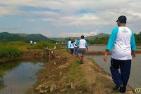 Susur pematang tambak di kawasan wisata mangrove