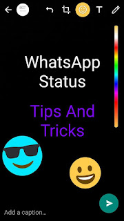 How To Pause Whatsapp Status For A Very Long Time Without 5
