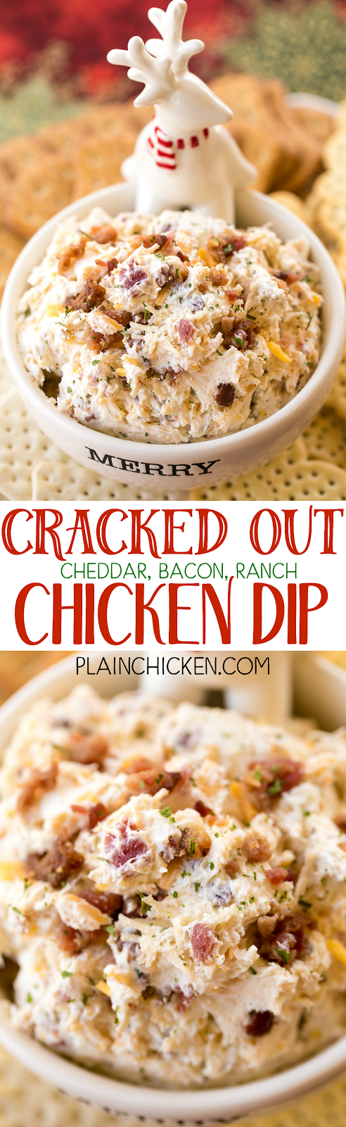Cracked Out Chicken Dip Plain Chicken