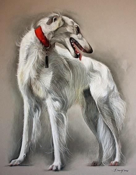 Hund Zeichnung vom Foto Hundeportrait Portrait