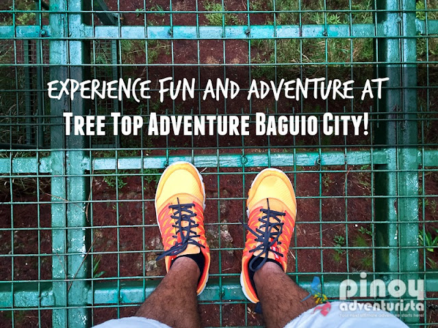 Things To Do in Baguio City Tree Top Adventure