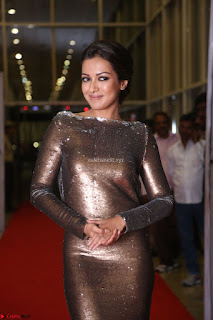 Actress Catherine Tresa in Golden Skin Tight Backless Gown at Gautam Nanda music launchi ~ Exclusive Celebrities Galleries 014.JPG