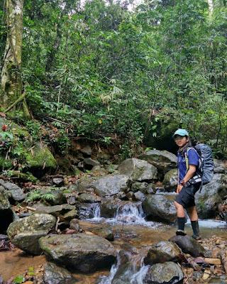 Gunung Halau-halau, Puncak Gunung Halau-Halaun, Jalur pendakian Gunung Halau-Halau, tracking Gunung Halau-Halau