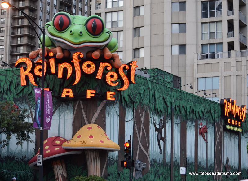new style d2268 a3e7a Rainforest Cafe, Chicago