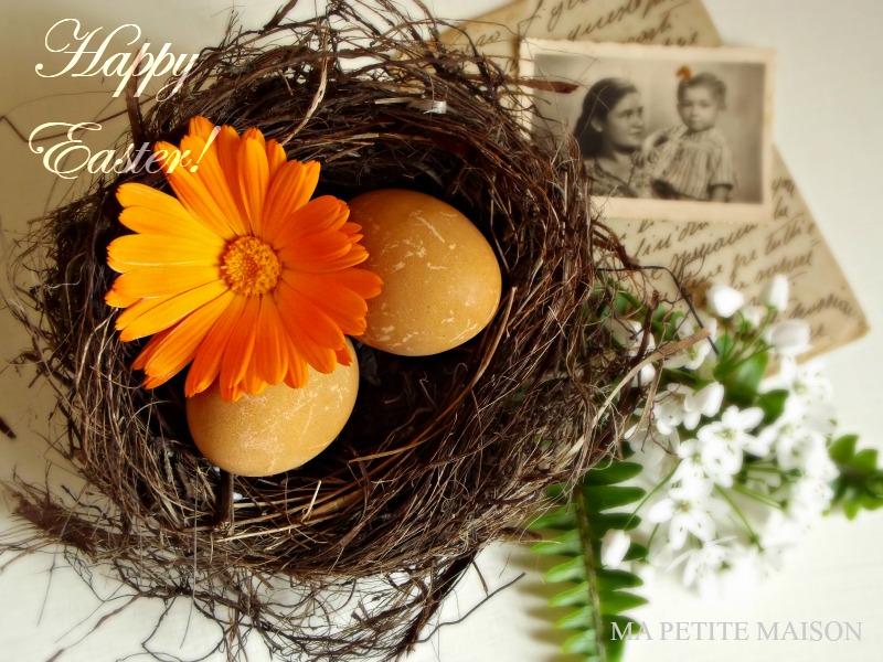Foto con nido, uova e fiori di Ma Petite Maison