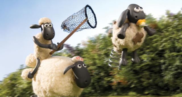 hewan kurban domba