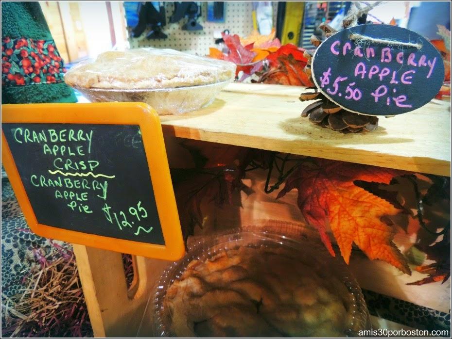 Cosecha De Arándanos en Wareham: Granjas