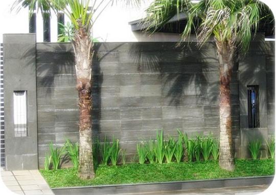 Desain Pagar Rumah Tembok