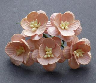 http://www.odadozet.sklep.pl/pl/p/Kwiatki-WOC-KWIAT-WISNI-peach-brzoskwiniowe-061-25mm-5szt/5778