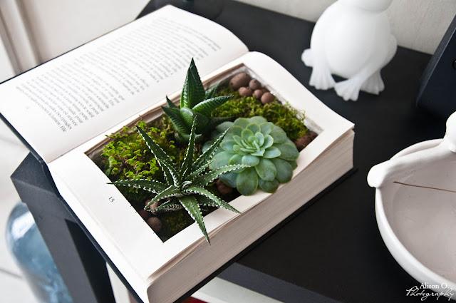 DIY livre végétal création