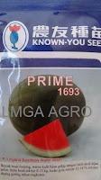 semangka f1 prime,semangka non biji lonjong,benih semangka f1 prime,bibit semangka non biji,known you seed