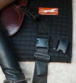 Equicore Concepts saddle pad details