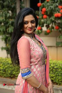 Actress Vimala Raman Stills in Beautiful Pink Salwar Kameez at (ONV) Om Namo Venkatesaya Press Meet  0176.JPG