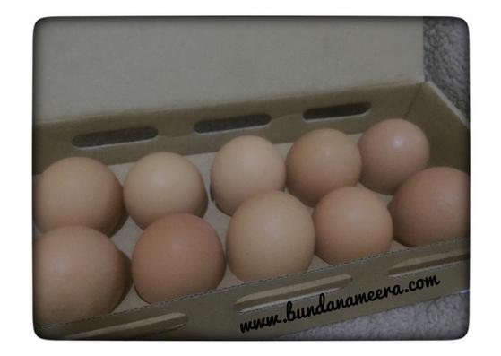healthy-eggs-telur-sehat