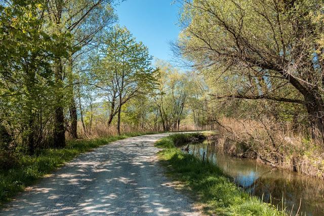 Moos-Rundweg Blaues-Land Murnau-staffelsee 05