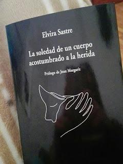 Benjamín Prado, Poesía erótica, poesía homosexual, Elvira Sastre Sanz