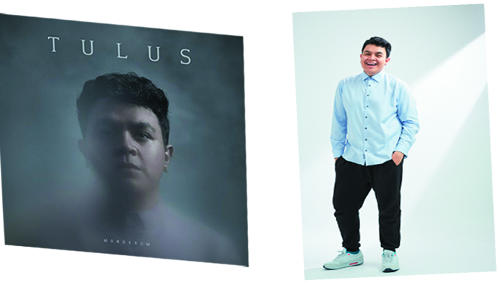 meet the stars tulus penyanyi