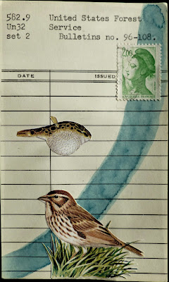 sparrow bird fish blowfish lady liberty french postage stamp united states forest service library card Dada Fluxus mail art collage