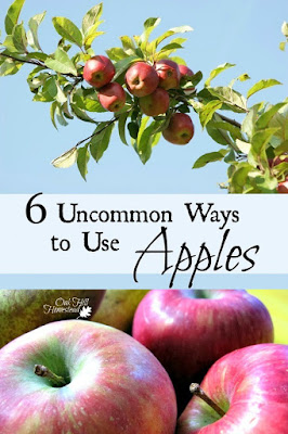 6 unusual ways to use apples - look beyond the usual applesauce and apple pie.