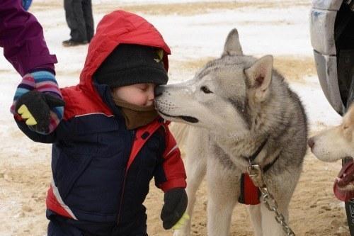 21 bức ảnh giải thích vì sao những chú cún luôn là người bạn thân nhất của con người