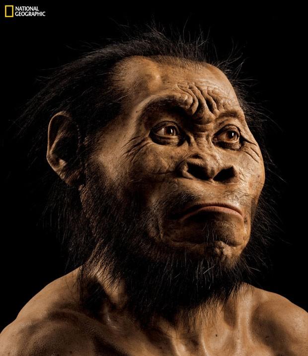 Nova espécie do gênero humano é descoberta na África do Sul