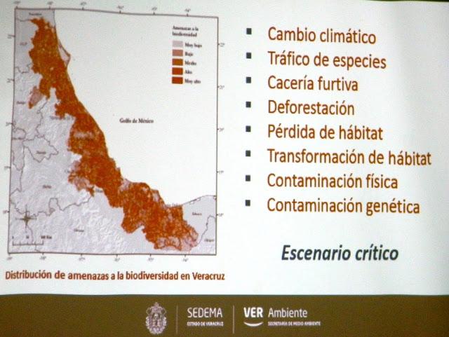 Veracruz escenario crítico en materia ambiental