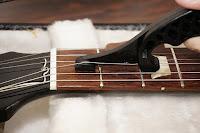 String Strecha image