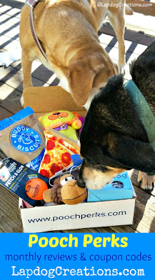 pooch perks dog box 2 rescued senior dogs